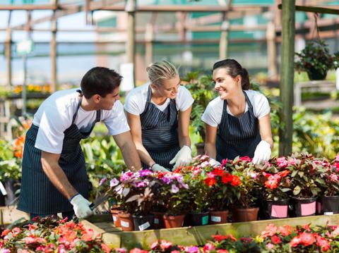 Group of Garden Workers