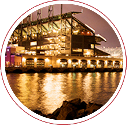 McCovey Cove at Night