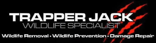Wildlife Removal Business Nashville Tennessee