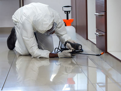 Pest Control Man Spraying Pesticide Under The Cabinet