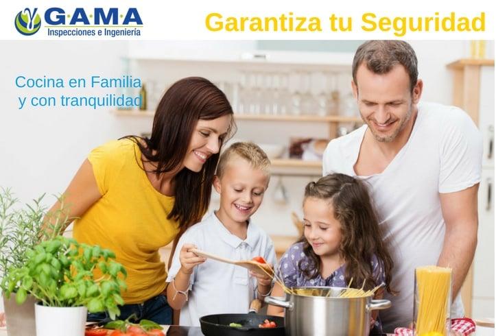 https://0201.nccdn.net/1_2/000/000/14a/950/GAMA-INSPECCIONES-Cocina-en-Familia--y-con-tranquilidad-723x490.jpg