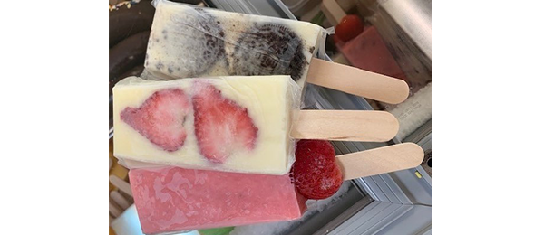 Fruity Paleta