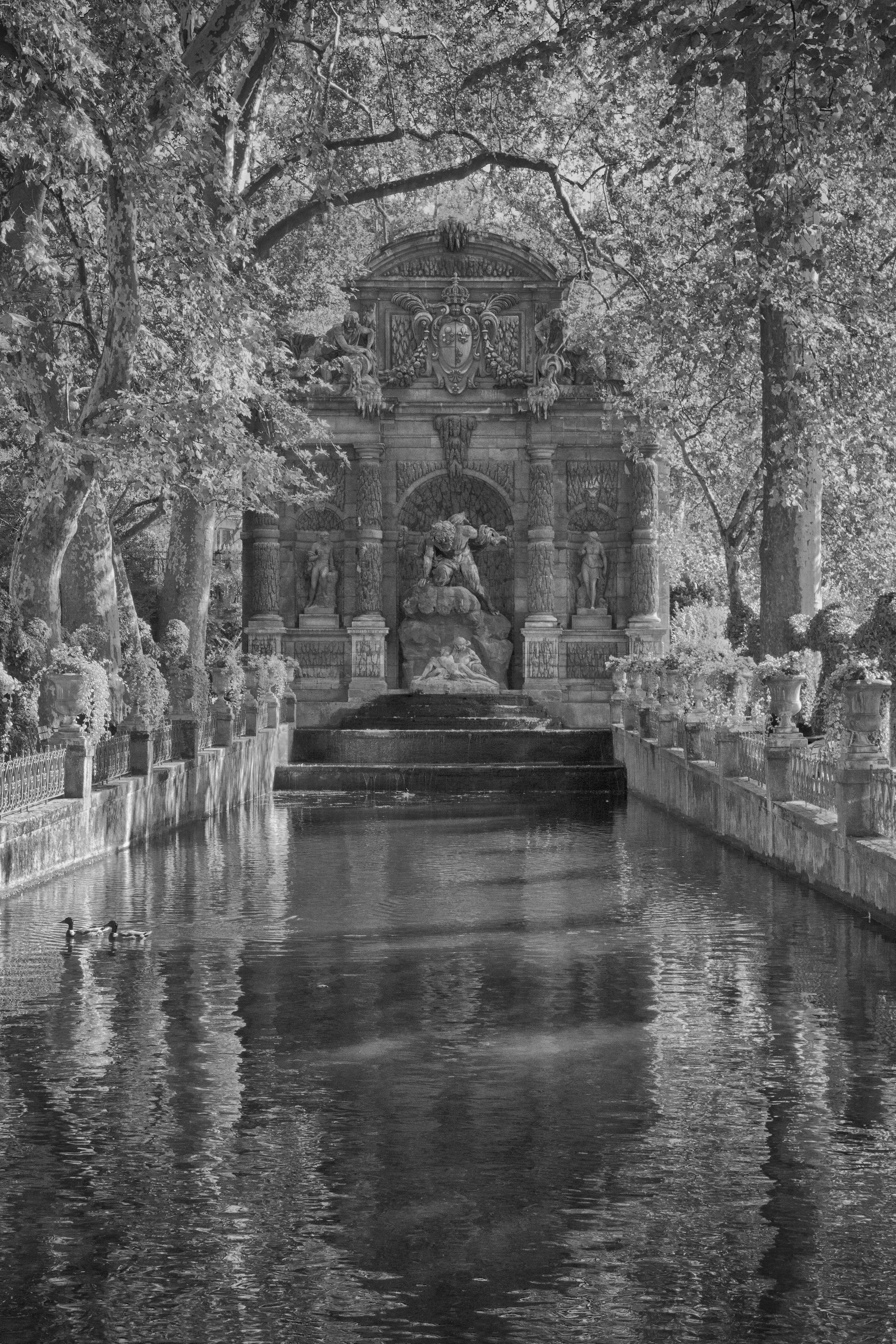Paris Luxembourg Garden Pool