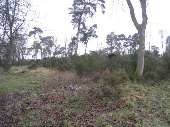 Site Clearance - Cambridgshire