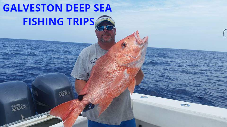 Galveston Deep Sea Fishing Trips