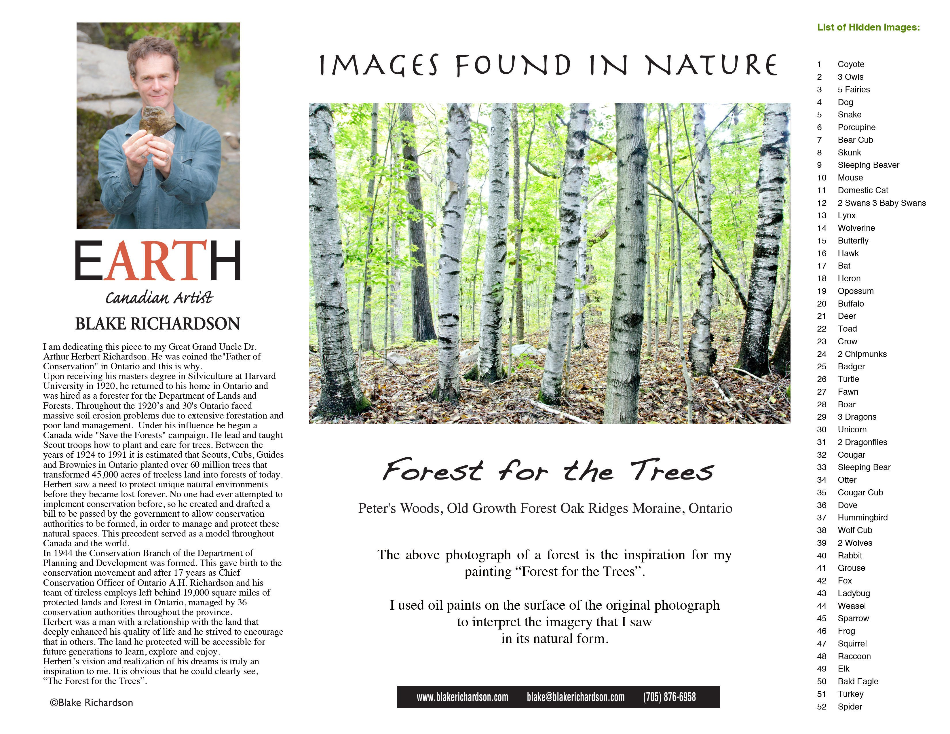 Forest for the Trees : Backing Page