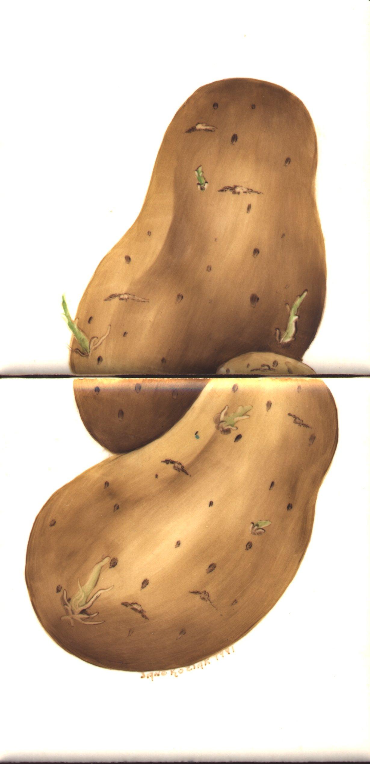 https://0201.nccdn.net/1_2/000/000/153/a07/potatoes.jpg
