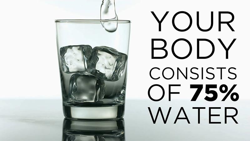 Your Body Consists of 75 Percent Water