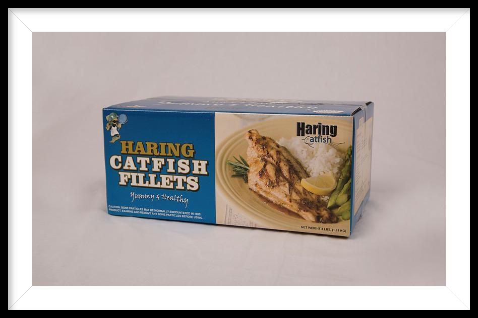 https://0201.nccdn.net/1_2/000/000/155/ae2/catfish.png
