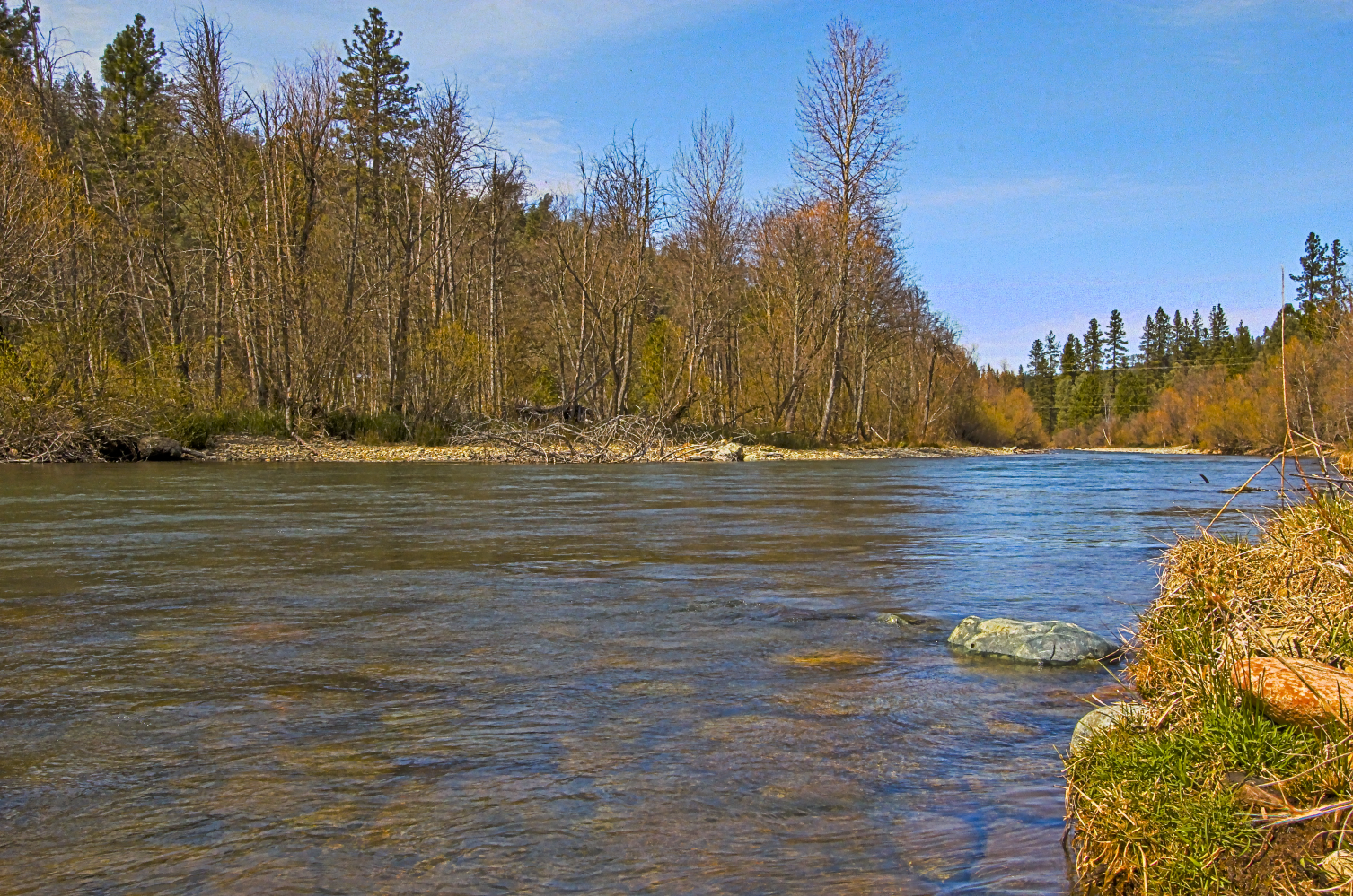 Upstream River Image