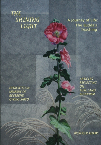 The Shining Light1 Book Cover
