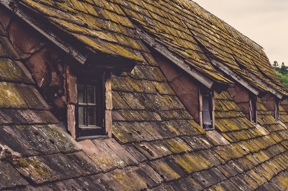 A home with dirty, dilapidated shingle roof in need or repair or replacement