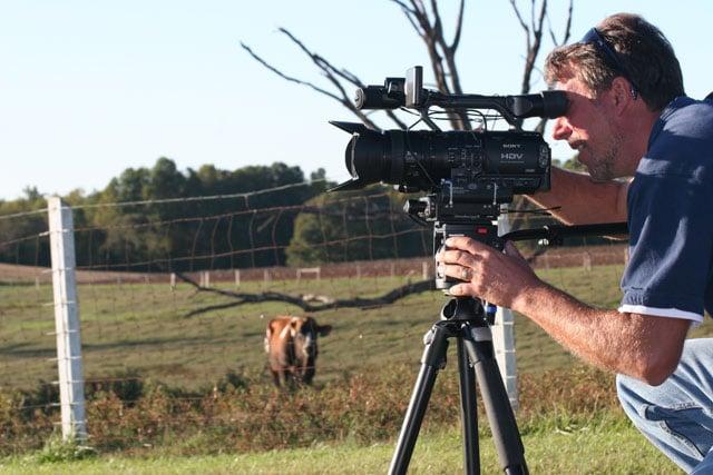 Wildlife Videography