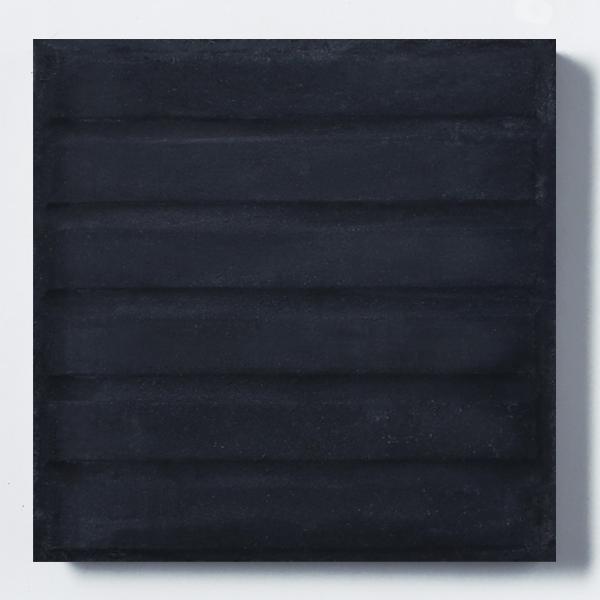 Vainilla negra 20x20
