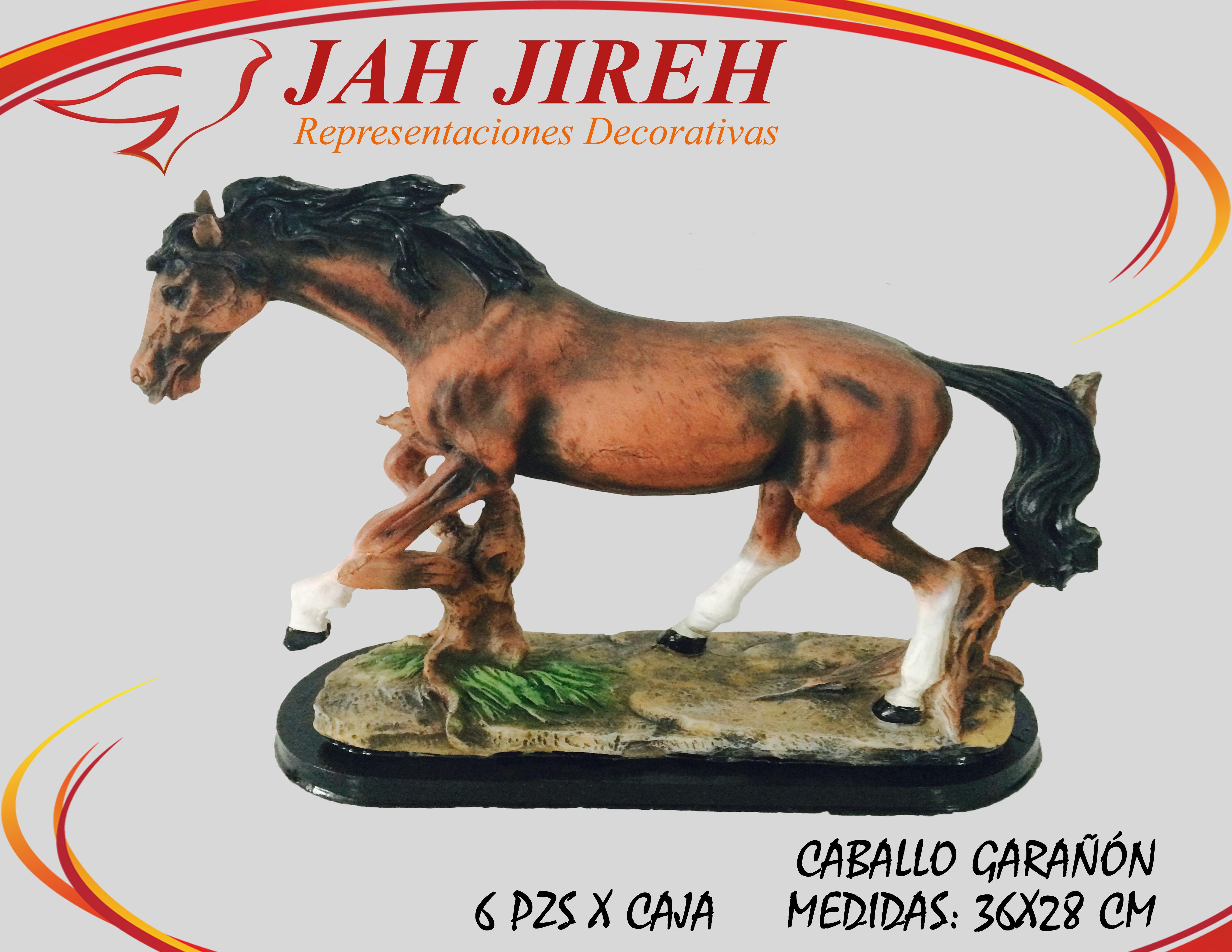 https://0201.nccdn.net/1_2/000/000/163/9a7/caballo-gara----n.jpg