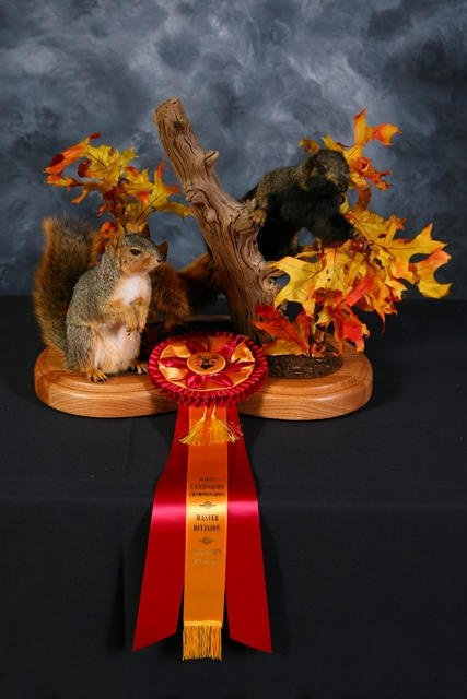 Our first Masters entry in competition took a second place