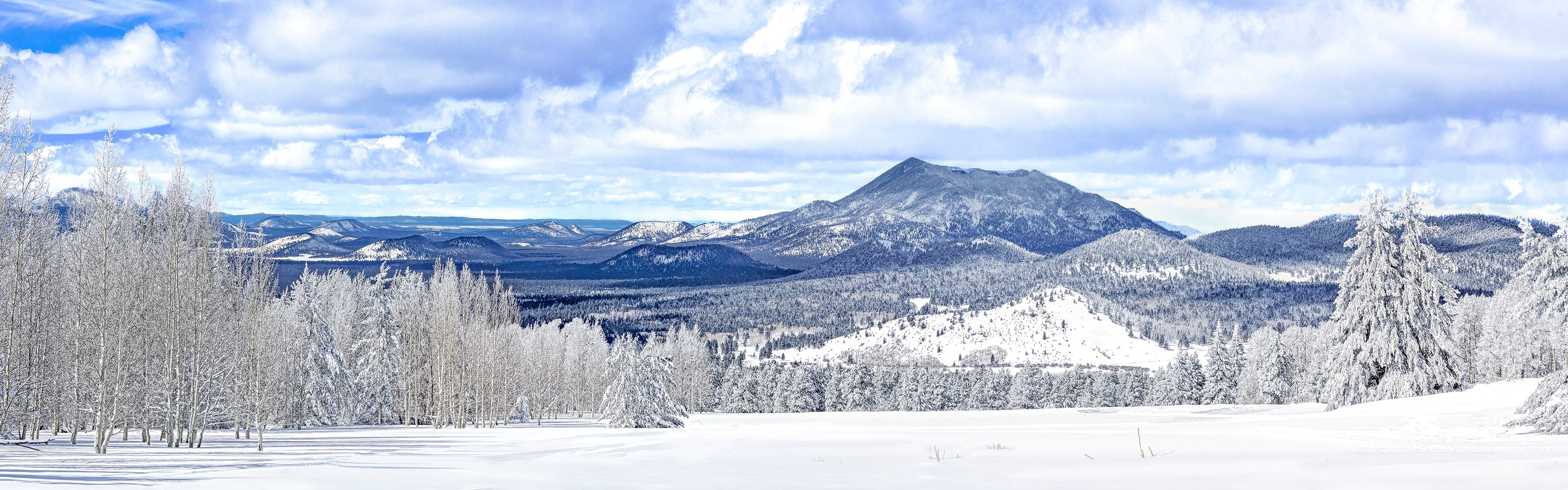 VIEW FROM THE SNOW BOWL