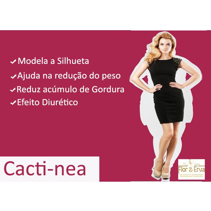 https://0201.nccdn.net/1_2/000/000/16c/207/cactinea.jpg