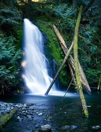 Wolf Creek Falls, Olympic Peninsula Mountains, WA