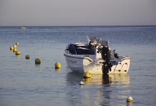White Motor Sea Boat