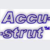 Accu-strut