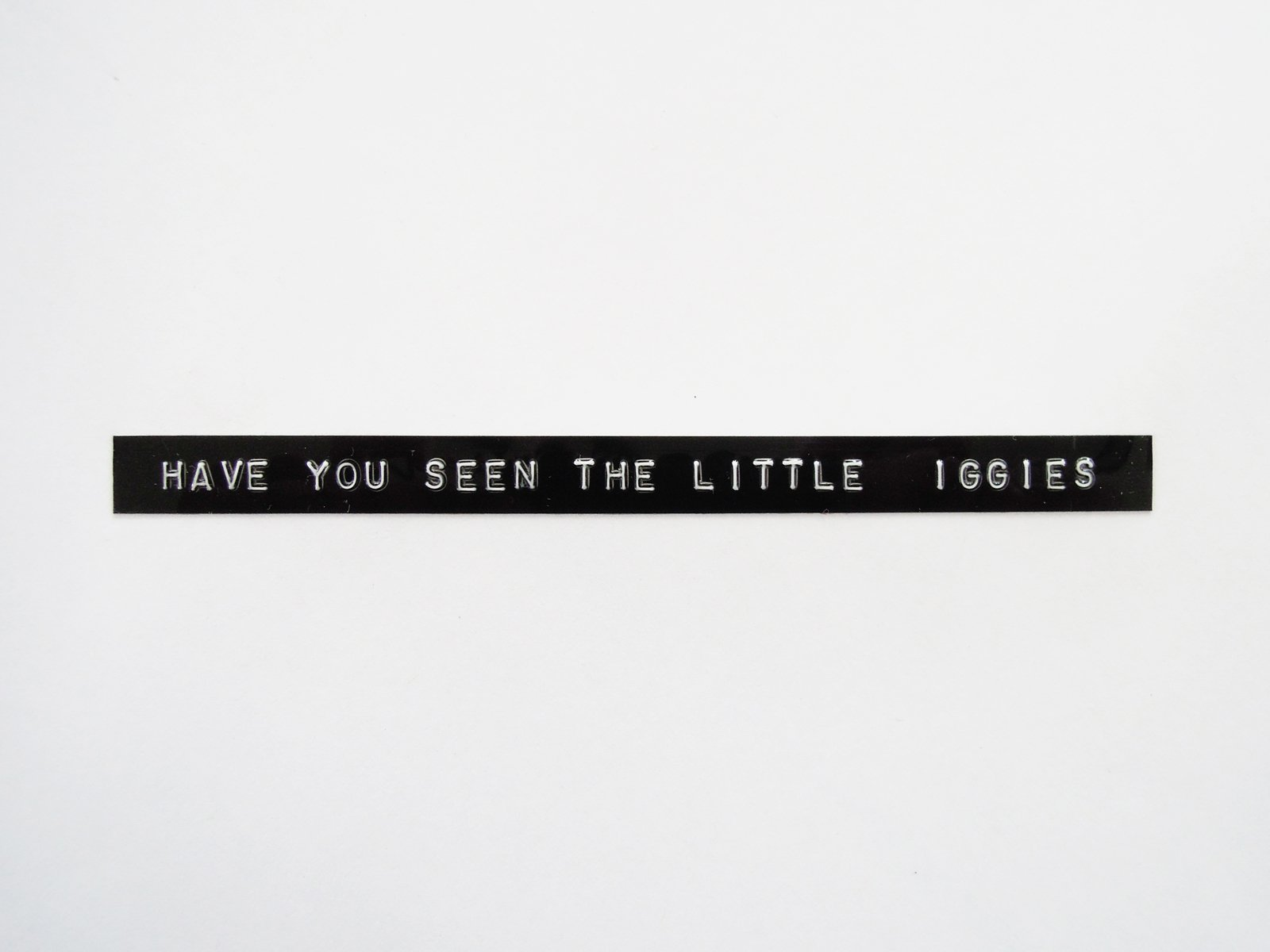 """A white-on-black embossed plastic label reads, """"Have you seen the little iggies."""""""