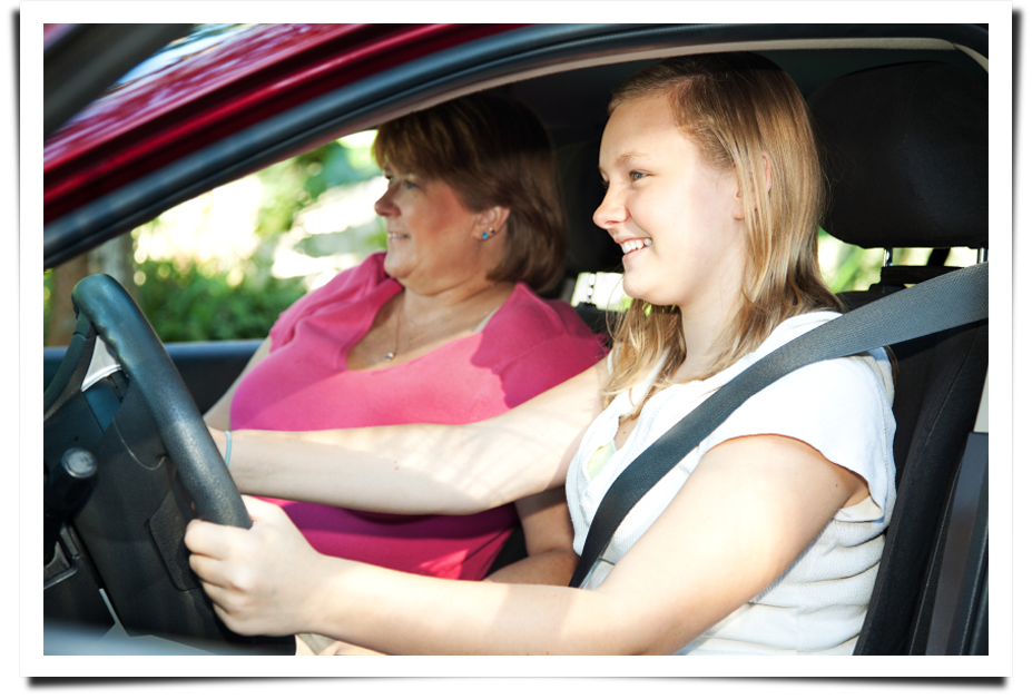Professional driving education classes||||
