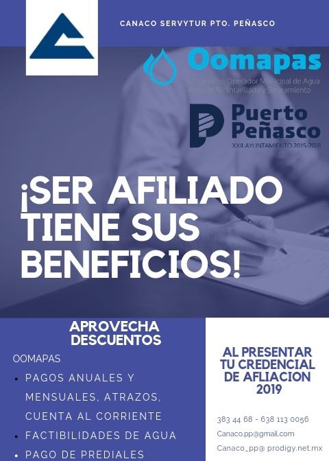 https://0201.nccdn.net/1_2/000/000/175/e39/CANACO-SERVYTUR-PTO.-PE--ASCO-bueno-480x672.jpg
