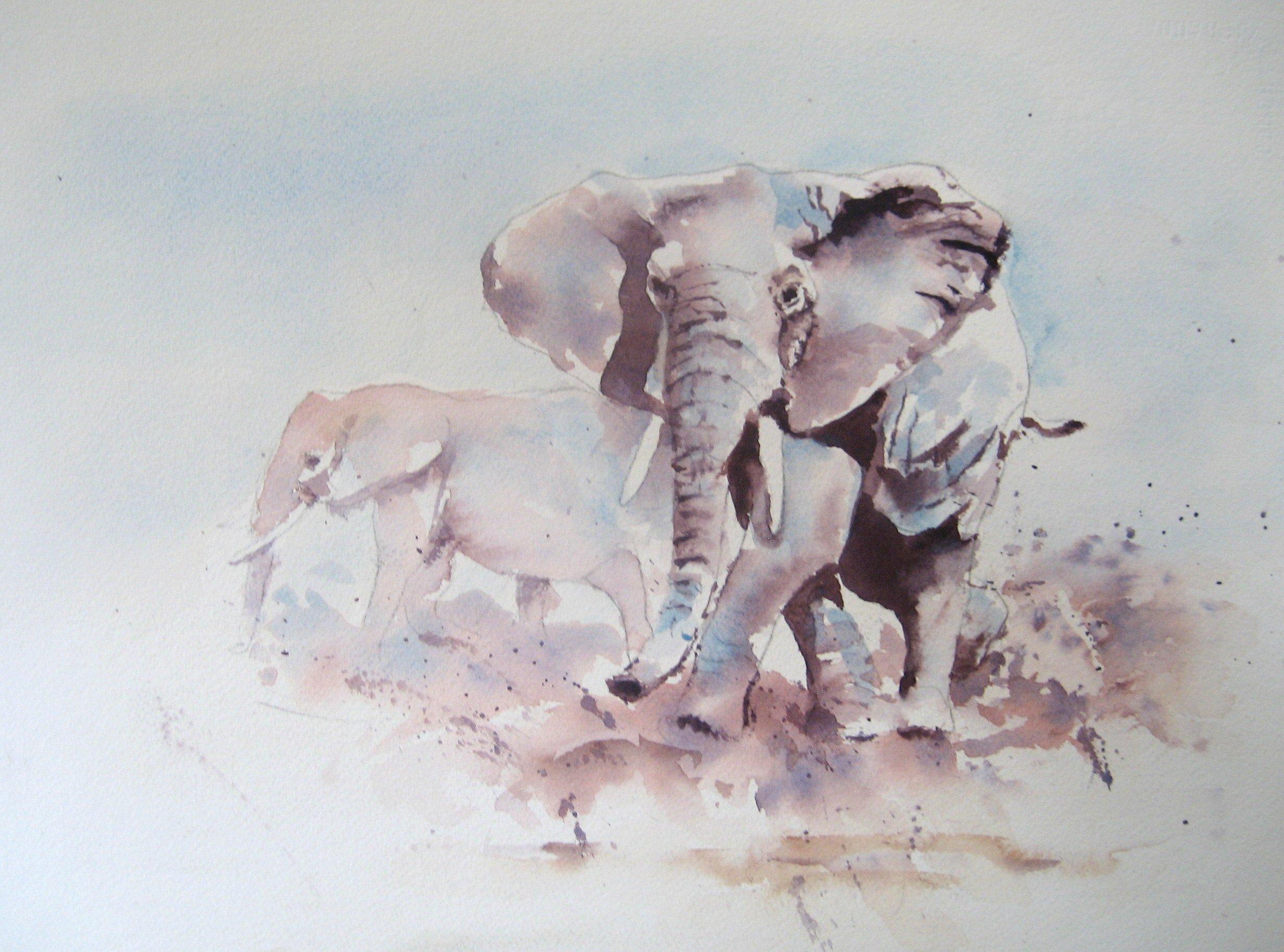 https://0201.nccdn.net/1_2/000/000/176/032/elephant.jpg