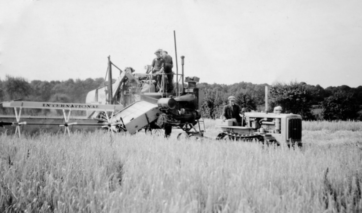 Harvesting at Lackford in 1940s