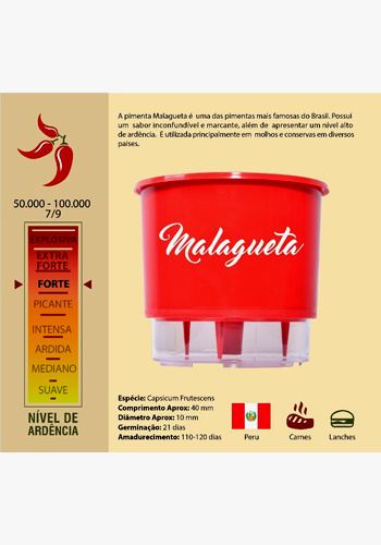 https://0201.nccdn.net/1_2/000/000/177/dab/malagueta-350x500.jpg