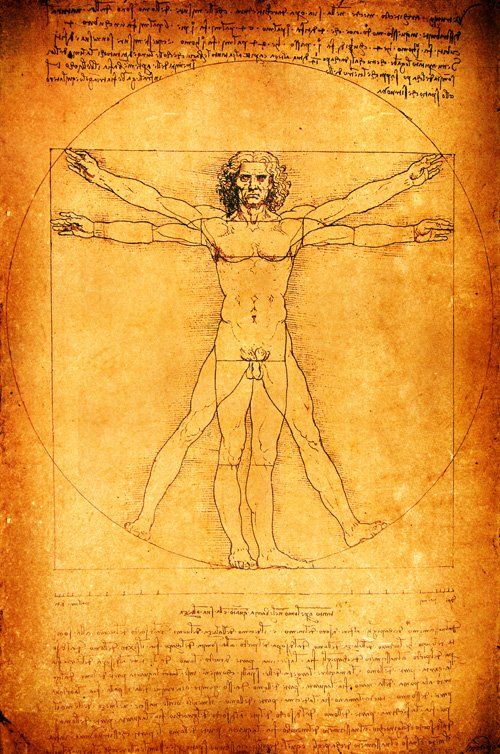 Vitruvian Man drawing||||The Vitruvian Man - Leonardo Da Vinci, famous Renaissance artist, scientist, and engineer, made over 200 drawings and many pages of notes towards a treatise on anatomy.