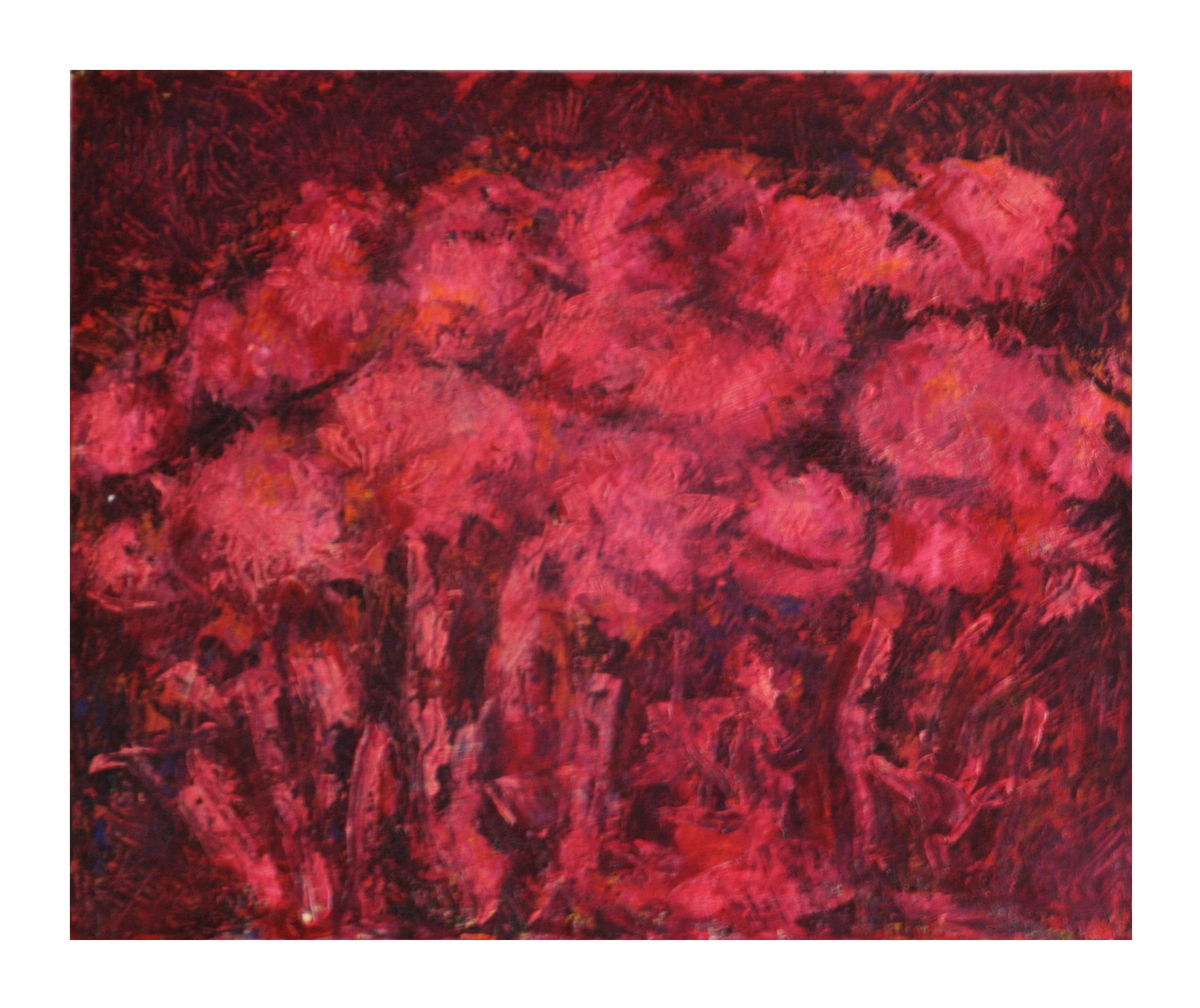 Hortensia Rojas  60 x 40