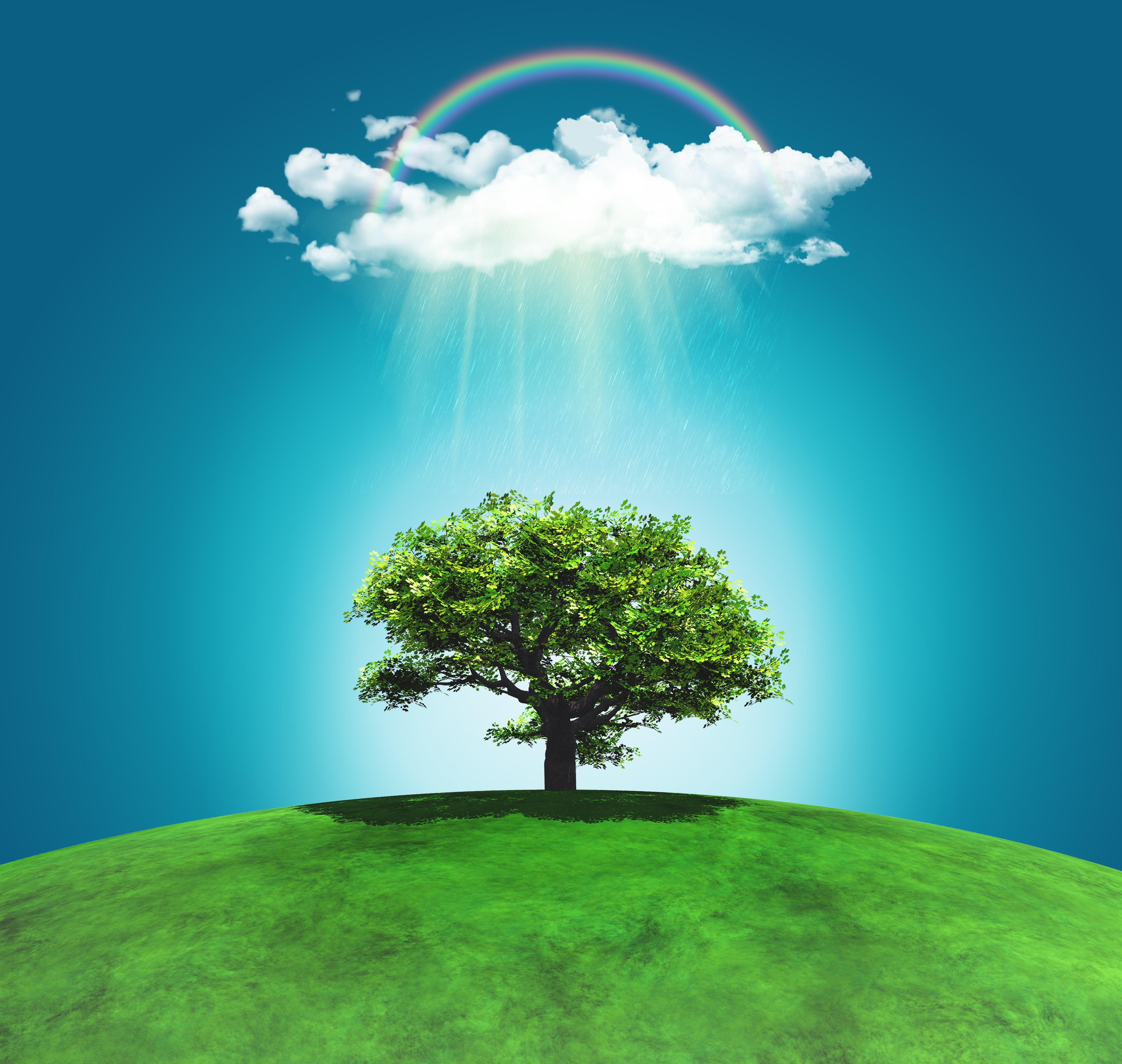 Progressing Sustainability Towards Lasting Change
