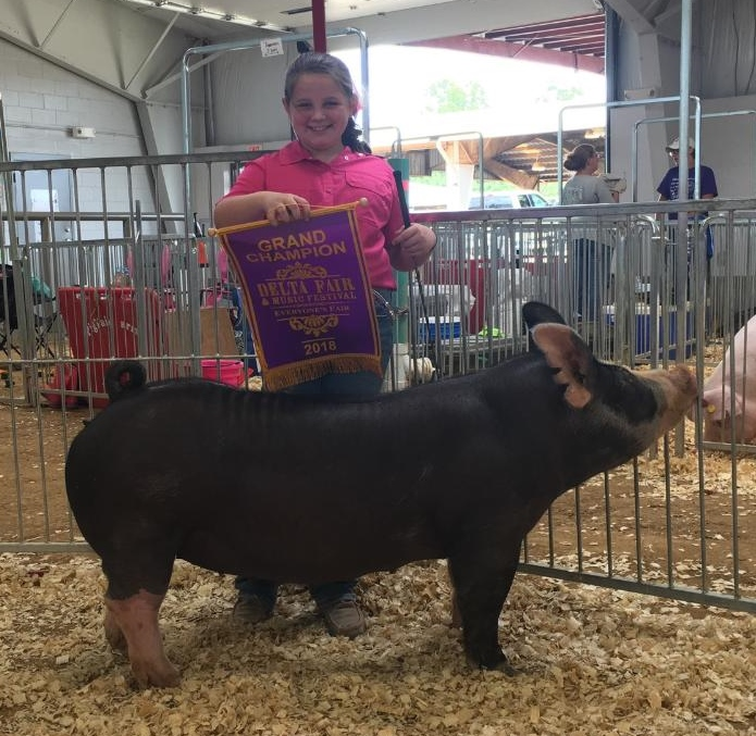 Ann Thomas Lowery 2018 Delta Fair & Music Festival Champion Berkshire Gilt