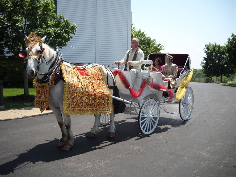 https://0201.nccdn.net/1_2/000/000/17c/ad3/indian-wedding-white-carriage.jpg