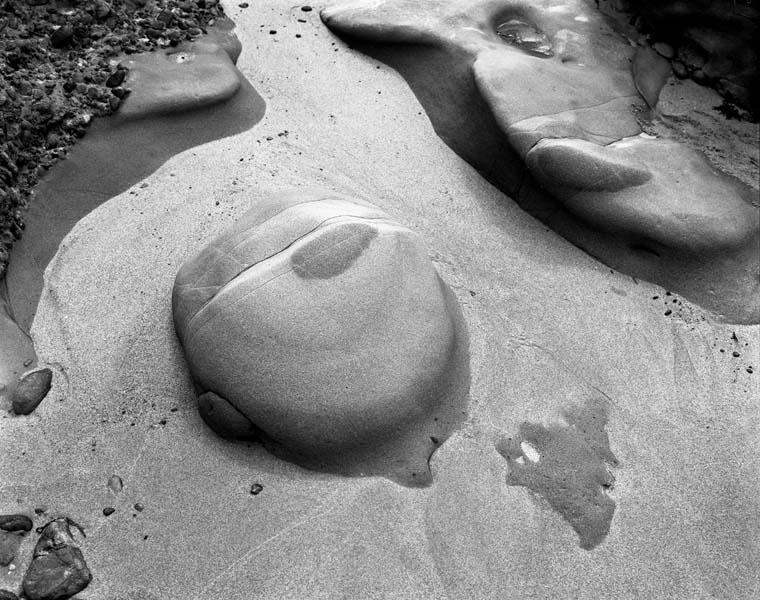 Point Lobos Rock Form