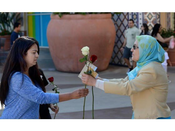 Hadith and roses project 2015