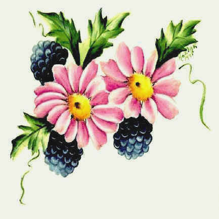 https://0201.nccdn.net/1_2/000/000/17f/00f/pink_daisy_with_black_rasp_2.jpg
