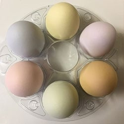 6 Pastel Ceramic Chicken Eggs
