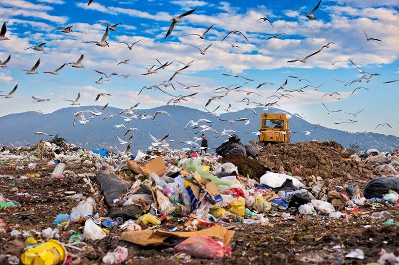 Landfill garbage waste in dump yard