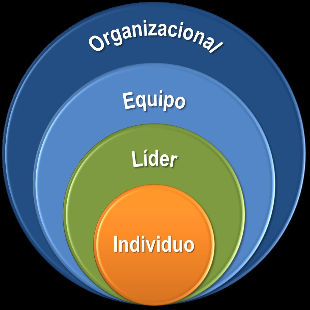 Modelo de Crecimiento y Efectividad de Fundamental Consulting