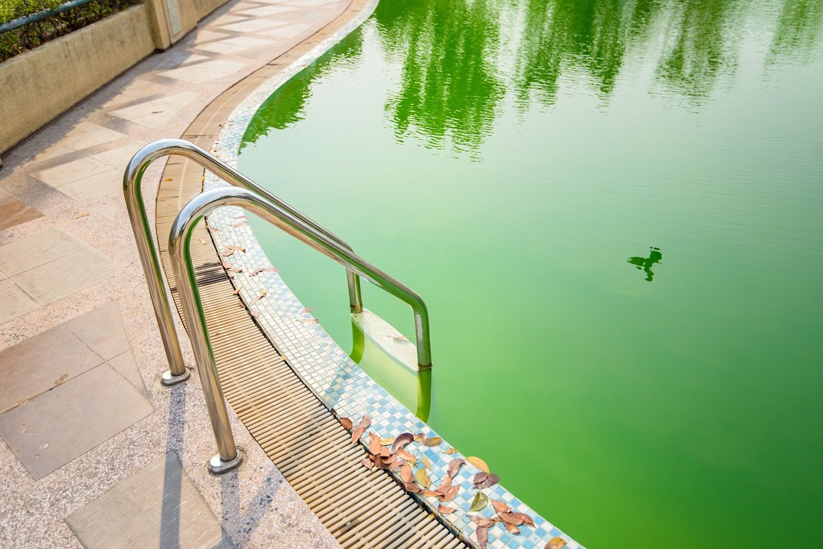 Green Pool Water