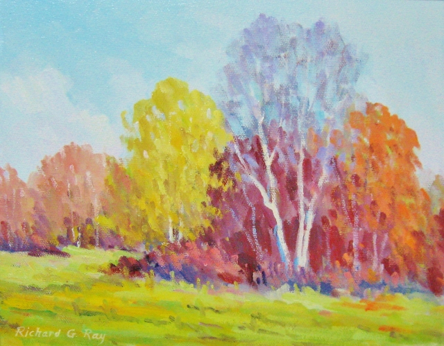 Thicket of Birches, 8 x 10 Oil