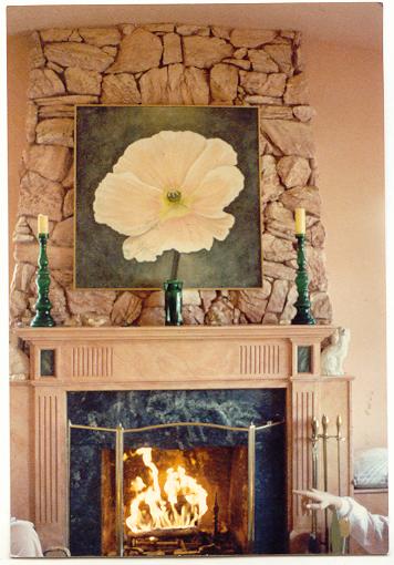 https://0201.nccdn.net/1_2/000/000/182/530/fireplace.jpg
