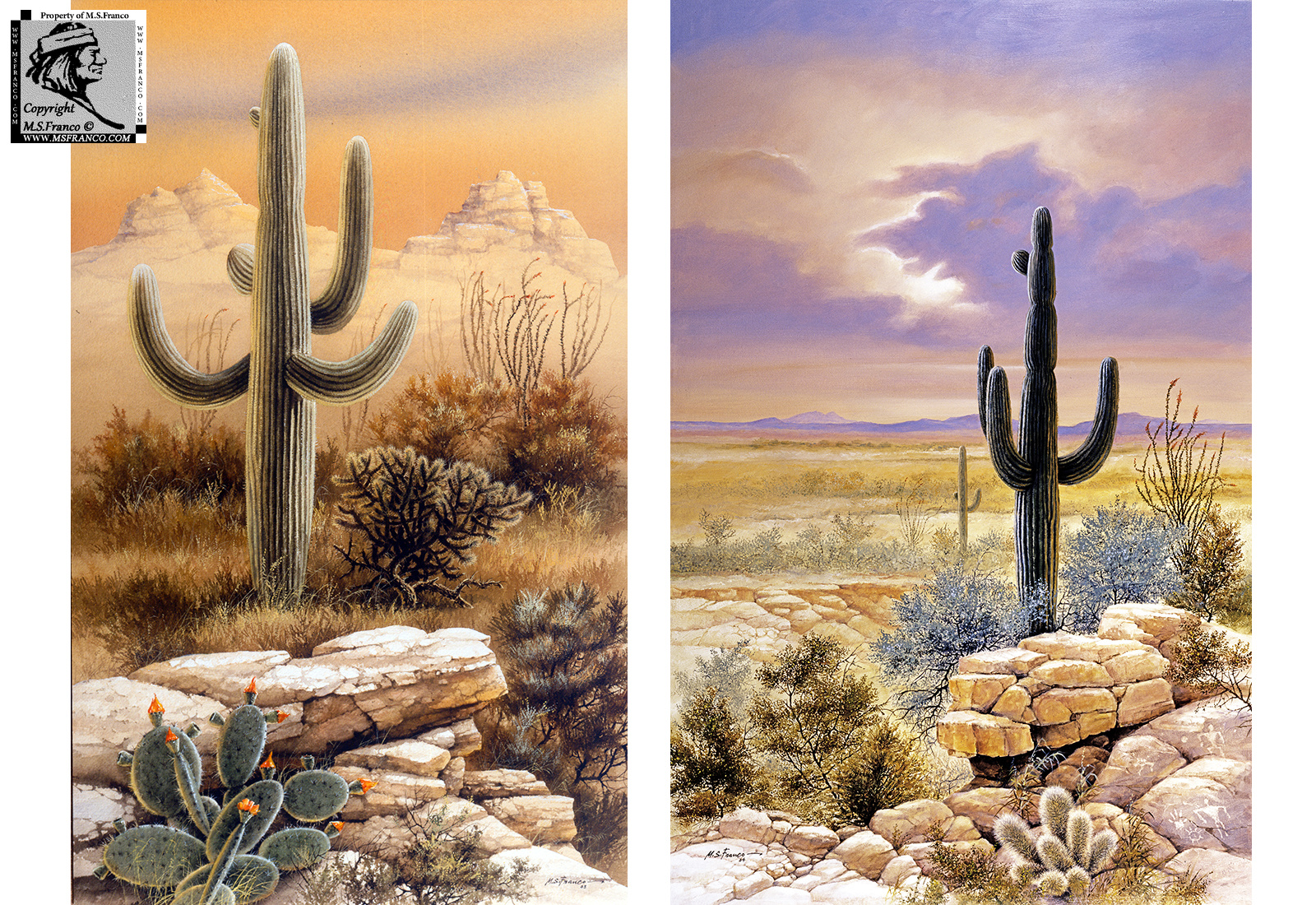 """Saguaro Country"" and ""Artistry of the Ancients"""