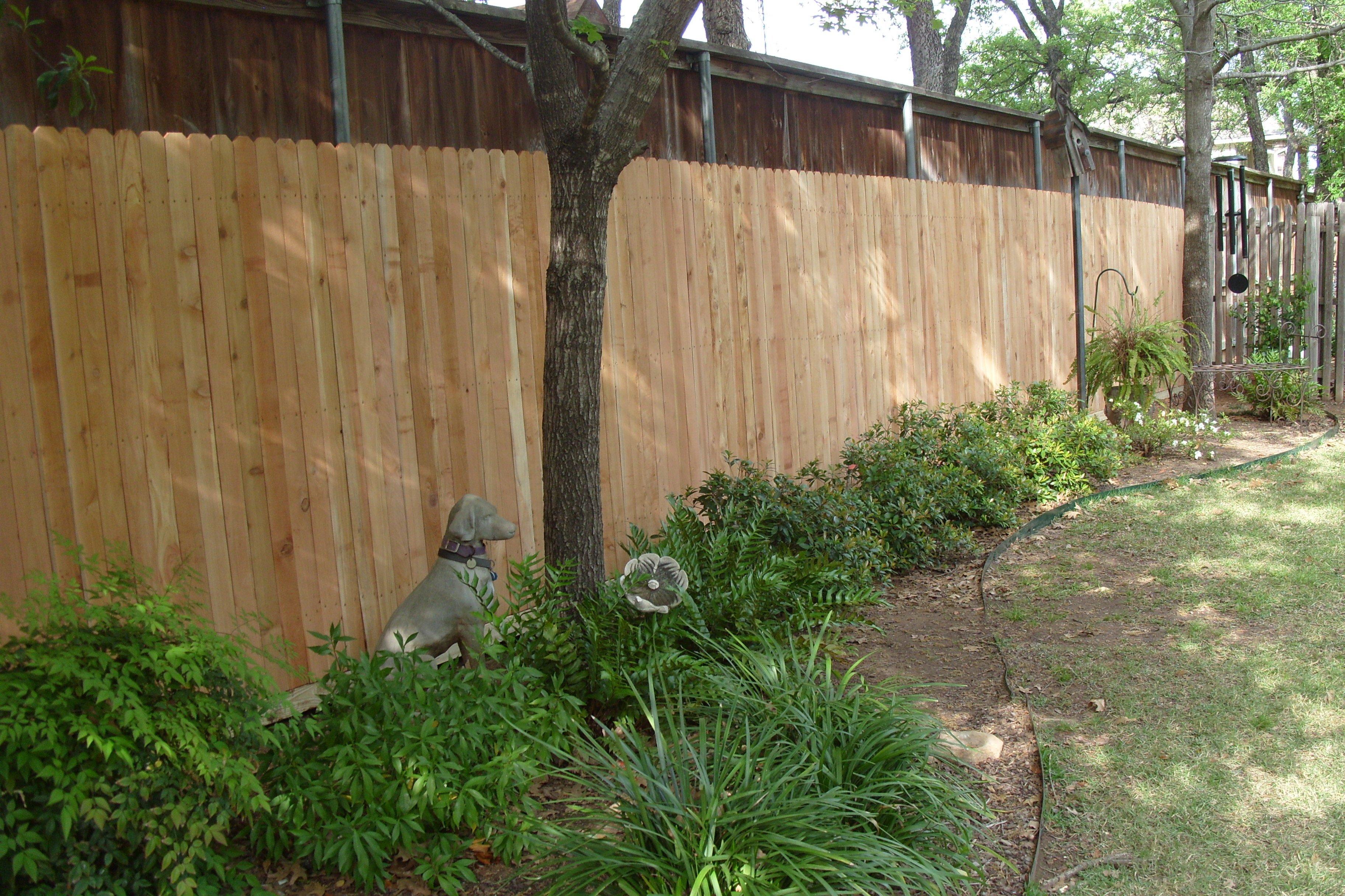 Newly Built Fence