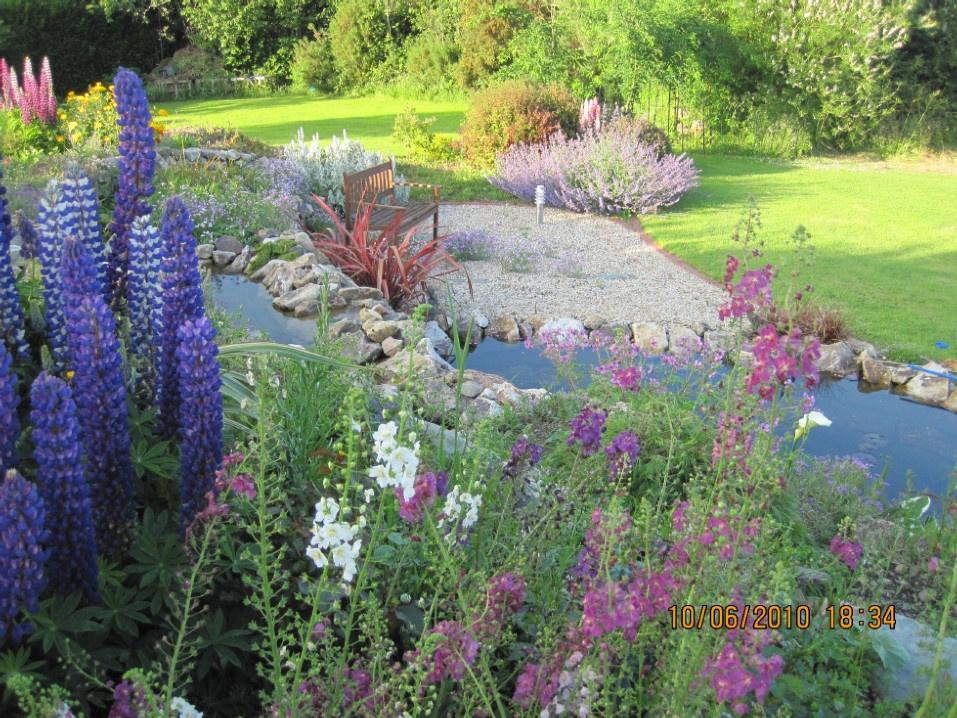 Beautiful Flowers in Delgany