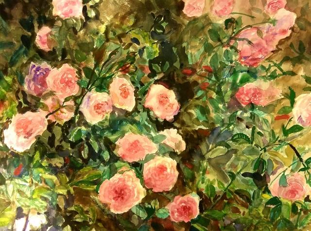 Taylor, Climbing Roses, 22x30 WC