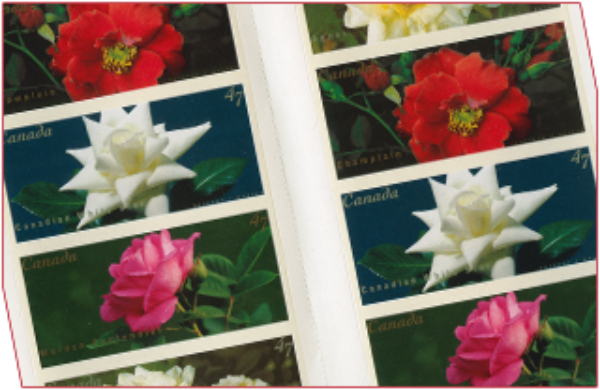 Renowned photographer Alex Waterhouse-Hayward's images of Canadian-bred roses appeared on postage stamps in 2001.